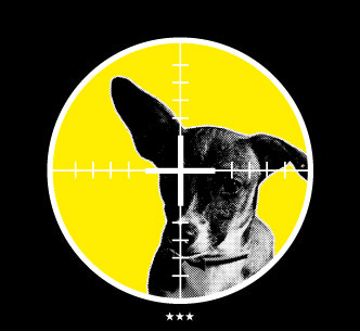Dog, Bones and Catering in Dresden